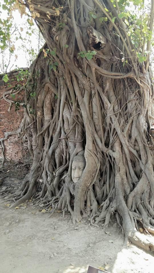 W świątyni Wat Maha That