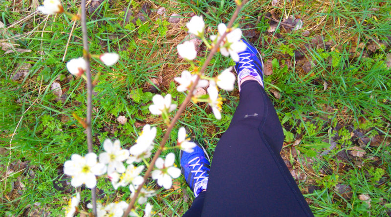 Dlaczego warto biegć na wiosnę - Zabiegane.com
